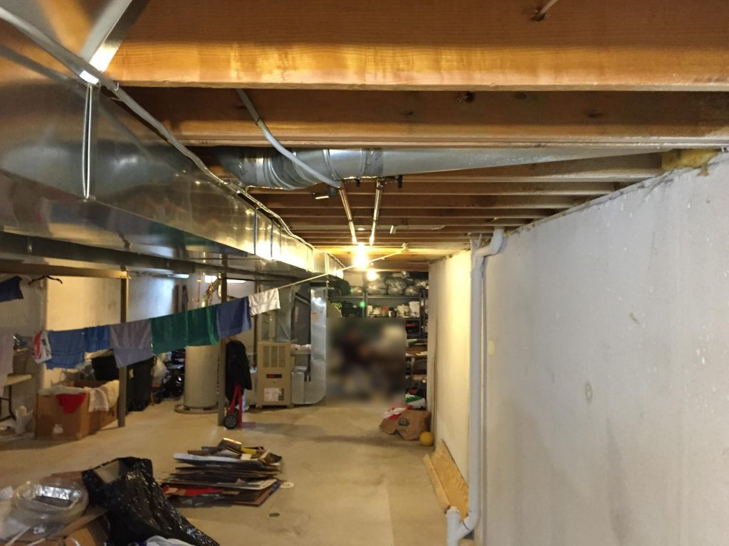 closed off basement with storage and low ceilings