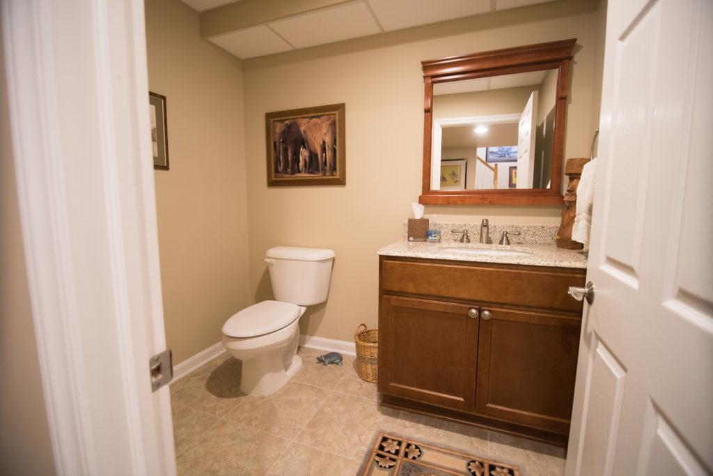 basement bathroom with vinyl plank flooring and spare bathroom