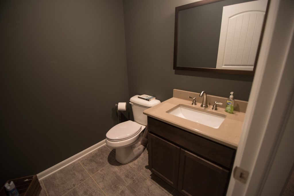 basement bathroom with vinyl tile