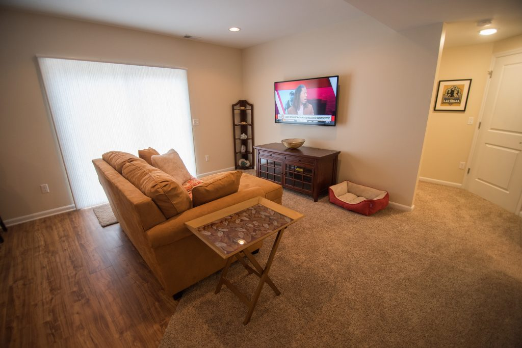 finished walkout basement living room