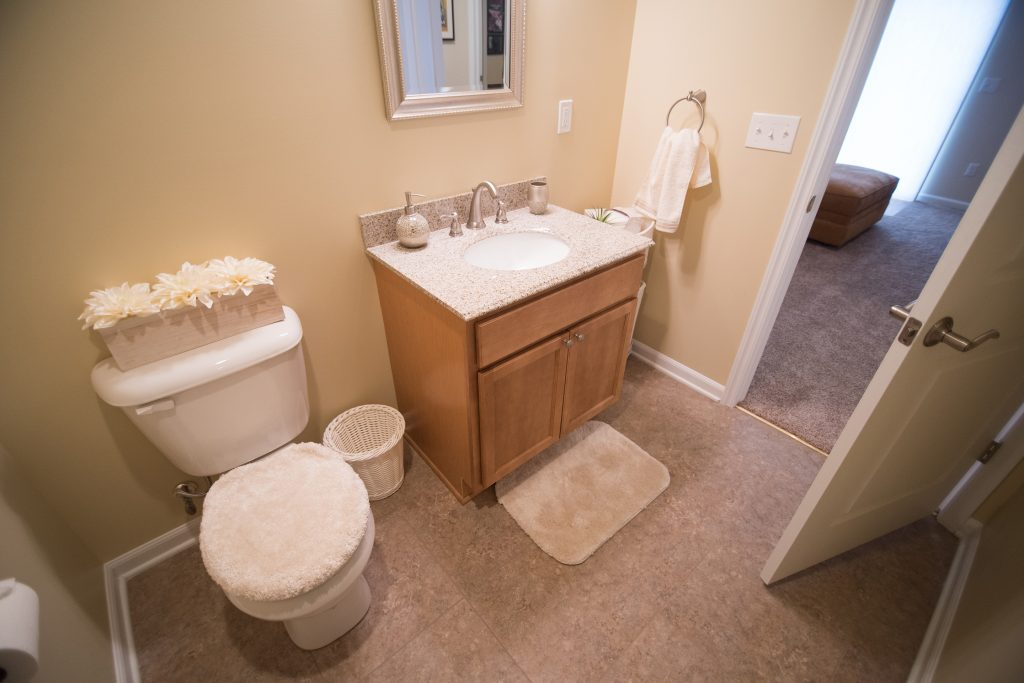 basement bathroom with vinyl tile and vanity