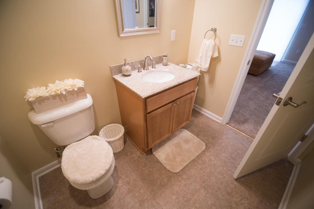 basement bathroom with vinyl tile and vanity